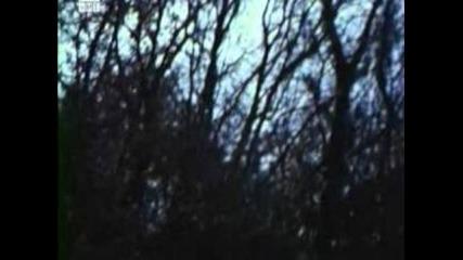 Горски Хора (1985) - Целия Филм