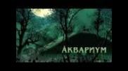 Аквариум - Мне Было Бы Легче Петь (live)