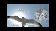 Иван Иванов - Стихове - Птица