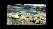 Контрастные океаны / Oceans of Contrast