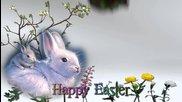 Happy Easter - Paste Fericit