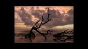 Alex Morph Feat Roberta Harrison - Photograph (jonas Hornblad Remix) Hq