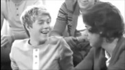 Niall - What Makes You Beautiful