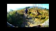 Bikepark Willingen Freeride