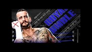 Wwe Royal Rumble 2012 Poster (feat. Cm Punk)