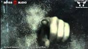 Richard Sebastian aka Russo - Delusional (original Mix) 【music Video Toj edit】