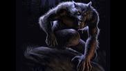 Вълк Единак (ултра саунд)