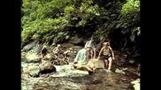 79 - Одиссея Жака Кусто - Акулы острова сокровищ