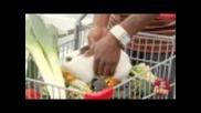 Заек при морковите - Скрита камера