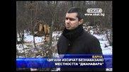 """Цигани изсичат безнаказано местността """"джанавара"""""""