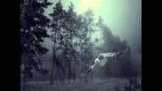 Vadim Kiselev - Alone In The Dark