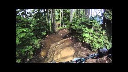 Downhill / Freeride