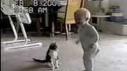 Котка срещу бебе смях
