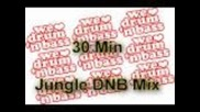 Hd - Jungle Dnb Mix - 30 Min - 2011