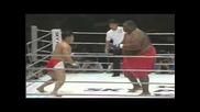 Sumo Vs Mma Fighter