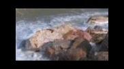 Ocean Meditation. By Shri Chinmoy