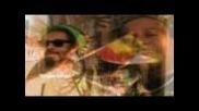 Ossie Dellimore,ruff Scott-reggae Music