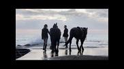 Axel Rudi Pell - The Line - Линията- 1080p H D