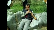 Orkestar zurni