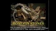Кости в камъните – Уолтър Файт