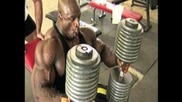 ronnie coleman chronicles