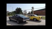 1966 Shelby Gt350 Dreams & A Hemi Cuda' Cameo !