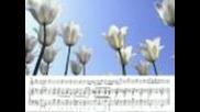 Handel. Sonata for flute Nr. 6 1(h-moll) Hans-peter Schmitz (flute)