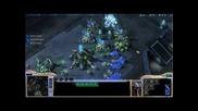 Starcraft 2 - Pvt - Ninja Pylon