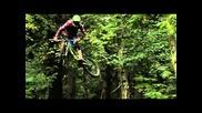 Freeride, Mountain, Biking