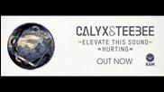 Calyx & Teebee - Elevate This Sound (original Mix) (amazing Quality)