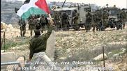 Шадиа Мансур - Всички те имат танкове