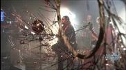 « Аквариум». Новогодний концерт на Дожде 28.12.13
