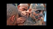 Gangs in Prison | National Geographic Documentary Hd
