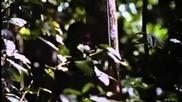 Robowar - Robot Da Guerra (1988) Full Movie Hq