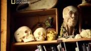 Кристалните черепи