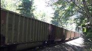 Американски товарен влак минава през гората 2 - Bnsf 8751 9959 8939 8907