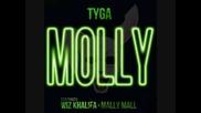 Tyga ft. Wiz Khalifa - Molly
