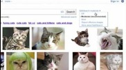 Safesearch for Google Images