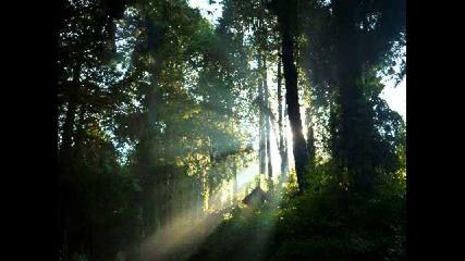 Хваление - Ще хваля с Духът