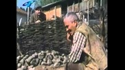 Сляпо куче (1980)