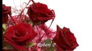 Robert P. - Drei rote Rosen 2013- Три червени рози 2013