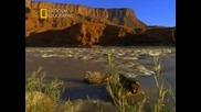 Первозданная природа. Каньонлендс. Американский Дикий Запад.