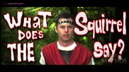 Rise of Mythos: What Does The Squirrel Say?