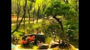 Мистическия Китай