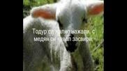 Заблеяло Ми Е Агънце - Борис Машалов
