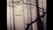 Trentemoller - Into the Trees
