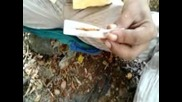 How To Create A Ganja Cigarette From Andheri