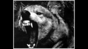 Amon Amarth & Apocalyptica - Live For The Kill