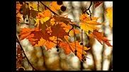 есента на мама