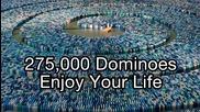 275,000 Dominoes - свалени с една спирала